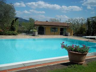 Limonaia - Gallicano vacation rentals
