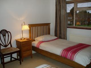 Nice 3 bedroom Guildford House with Internet Access - Guildford vacation rentals