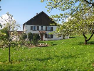 Beautiful Gite with Internet Access and Satellite Or Cable TV - Gerardmer vacation rentals