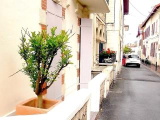 Excellent 2-room apartment with terrace - Biarritz vacation rentals