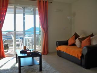 1 bedroom Apartment with Garage in Collioure - Collioure vacation rentals