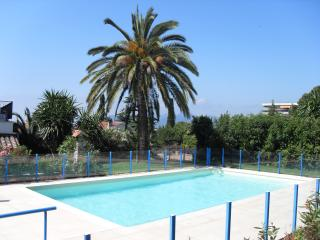 Nice Cannes vacation Apartment with Dishwasher - Cannes vacation rentals