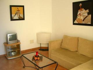 Perfect Condo with Stereo and Toaster - El Cotillo vacation rentals