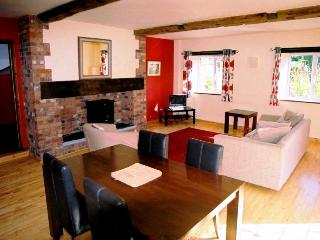 Bramley cottage - Ottery Saint Mary vacation rentals