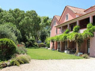 Quinta da Varzea - Colares vacation rentals