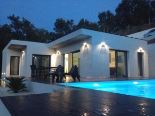 MAISON CONTEMPORAINE PISCINE - La Londe Les Maures vacation rentals