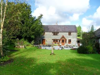 Lovely Cottage with Internet Access and Dishwasher - Llandovery vacation rentals