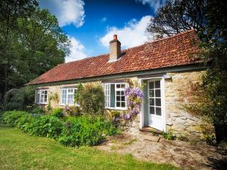 Comfortable 2 bedroom Cottage in Bridport with Internet Access - Bridport vacation rentals
