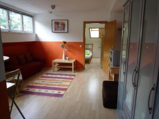 Schulstrasse Zell am See - Zell am See vacation rentals