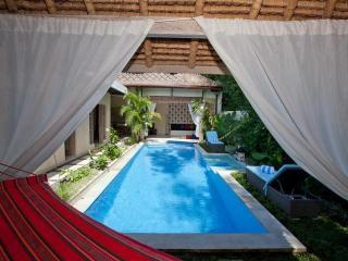 Luxury 2 BR Surfer Villa, Canggu, Close To Beach - Sanur vacation rentals