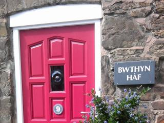 Bwthyn Haf Holiday Cottage - Conwy vacation rentals