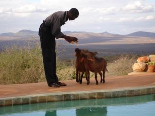 Tandala, Maparasha Hills, Il'Bisil - Amboseli National Park vacation rentals