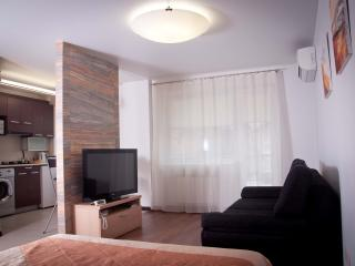 Bright 1 bedroom Minsk Apartment with Internet Access - Minsk vacation rentals