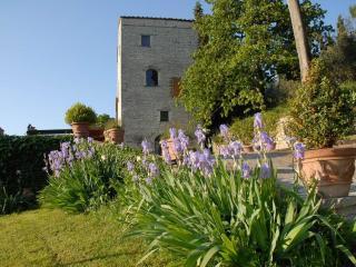 1 bedroom Tower with Internet Access in Rignano sull'Arno - Rignano sull'Arno vacation rentals