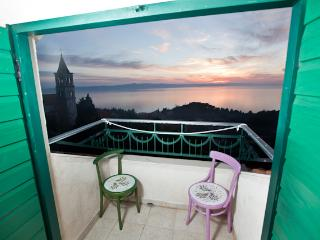 Beautiful Dalmatian house with pool and sea view - Podgora vacation rentals