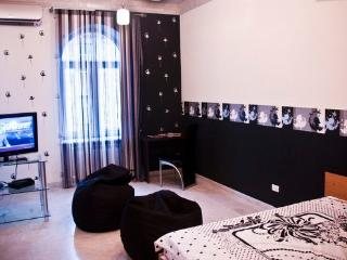 Luxurious spacious highceiling - Yerevan vacation rentals