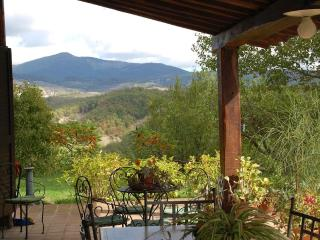 Old Brick Farm (v034) - Radicofani vacation rentals