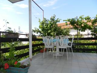 Apartments Milenko - 21781-A1 - Raslina vacation rentals