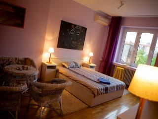 Apartment Center KING MILAN STREET - Belgrade vacation rentals