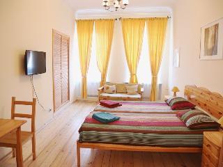 Nice 4 bedroom Condo in Saint Petersburg - Saint Petersburg vacation rentals