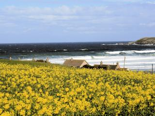 Beach Cottage - Portsoy vacation rentals