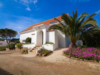 Nice Cottage with Internet Access and Satellite Or Cable TV - Barao de Sao Joao vacation rentals