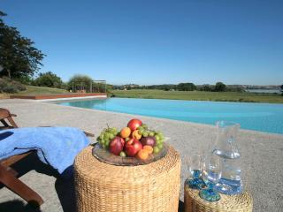 Primrose Villa (V039) - Chiusi vacation rentals