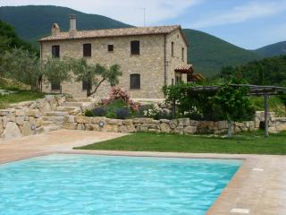 Spacious traditional style farmhouse with pool. - Montecchio vacation rentals