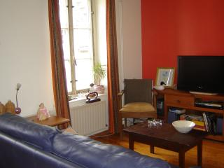 comfortable apartment in the centre of Maastricht - Maastricht vacation rentals