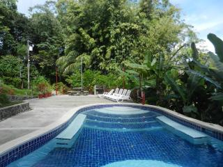 Cozy Eco Condo 2 BR, 1 bath, very spacious - Quepos vacation rentals