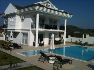 Lovely 4 bedroom Villa in Oludeniz - Oludeniz vacation rentals