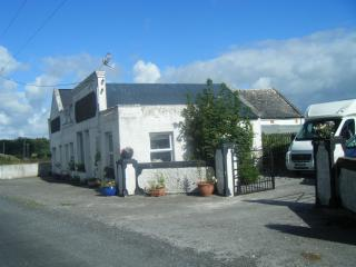 Fishing & Walkers Retreat - Roscommon vacation rentals