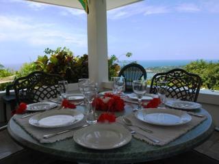 Tranquility Villa~Port Antonio - Port Antonio vacation rentals