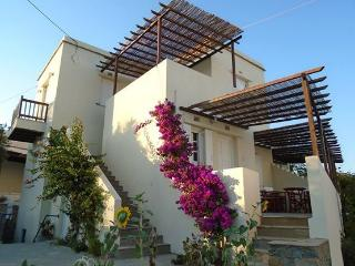 Nice Condo with Television and Towels Provided - Tinos vacation rentals