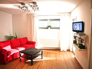 Cozy Condo with Internet Access and Central Heating - Bad Kreuznach vacation rentals