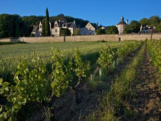3 bedroom Chateau with Internet Access in Chinon - Chinon vacation rentals