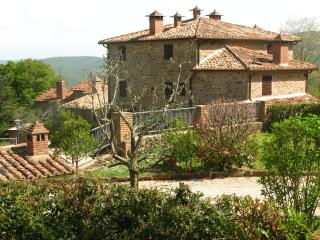 Splendid family flat, pool, baby playground - Cortona vacation rentals