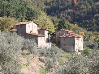Nice House with Shared Outdoor Pool and Balcony - Reggello vacation rentals