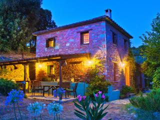 Olive Store Cottage, Pelion, Platania - Platania vacation rentals