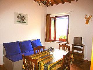 Casa Sibilla E - Castellina In Chianti vacation rentals