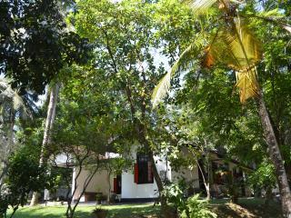 Aranga-La ,Srilanka holiday bungalow with vehicle - Colombo vacation rentals