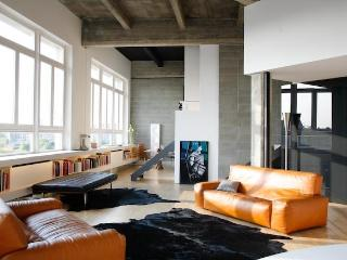 Luxury Loft Penthouse WINE - SKI - ART - CULTURE - Turin vacation rentals