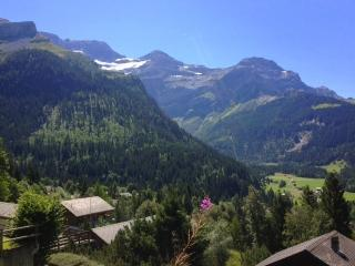 1 bedroom Condo with Towels Provided in Les Diablerets - Les Diablerets vacation rentals