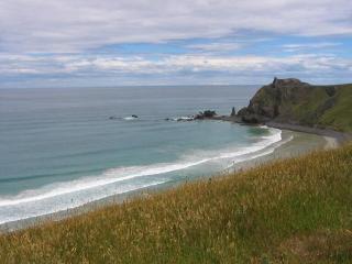 Karaka Alpaca Farmstay B&B - Dunedin vacation rentals
