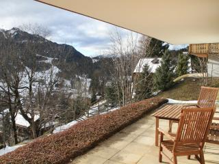 1 bedroom Apartment with Central Heating in Les Diablerets - Les Diablerets vacation rentals