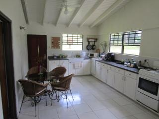 Nice Villa with Deck and Internet Access - Saint Vincent vacation rentals