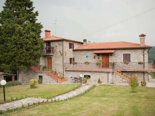 Nice Bed and Breakfast with Internet Access and Garden - Caprese Michelangelo vacation rentals