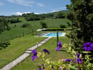 8 bedroom B&B with Internet Access in Caprese Michelangelo - Caprese Michelangelo vacation rentals