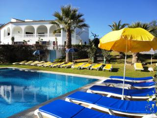 V9 Villa Luz - Alcantarilha vacation rentals