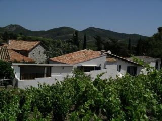 The grape pickers house - Cascastel-des-Corbieres vacation rentals